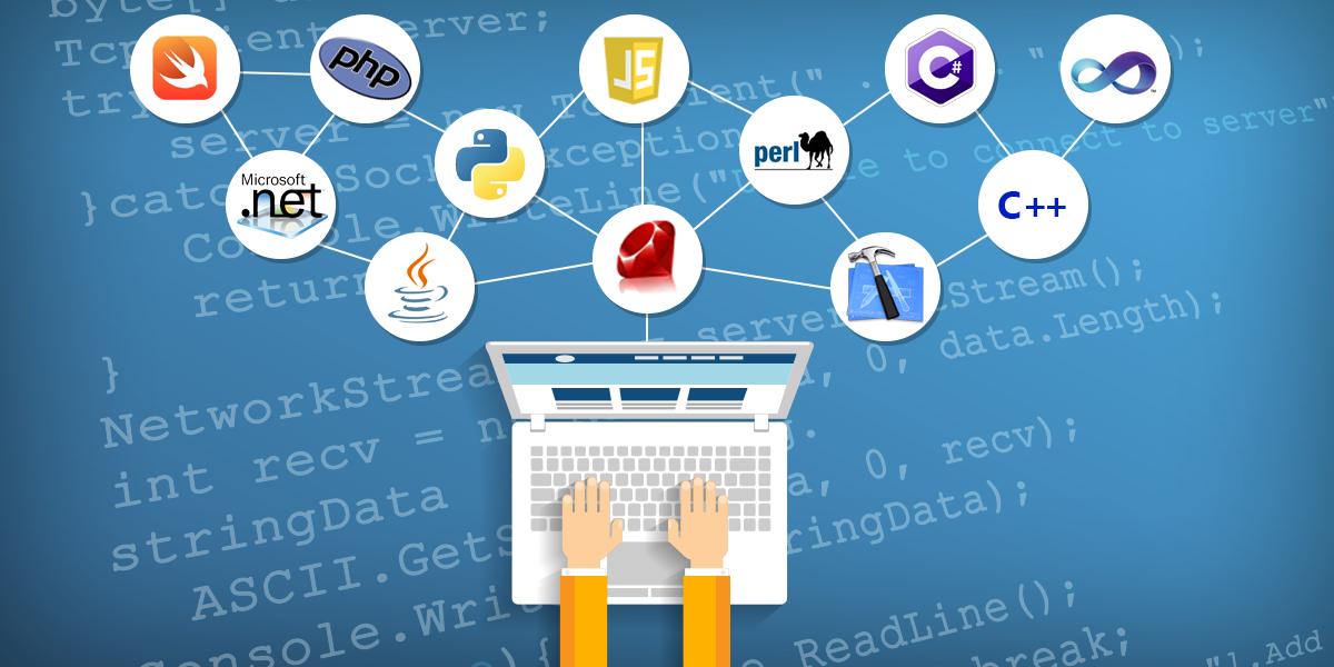 Programming/Database Management